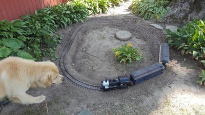 A small garden railroad was installed in July. Even four legged pets love trains.